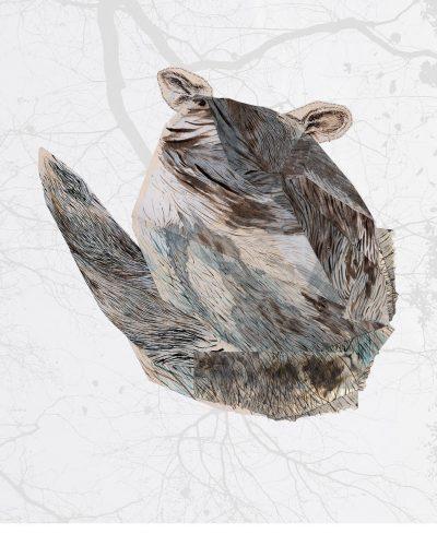 Jan Davis Possum skin bag, digital print on paper (2016)