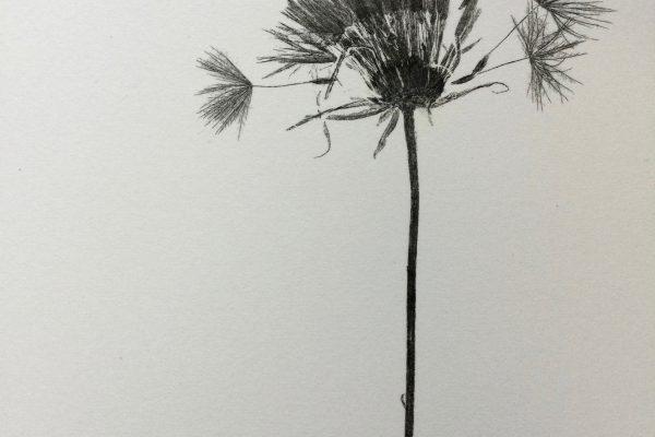 nature print2